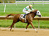 Smokette PS winning at Delaware Park on 10/3/12