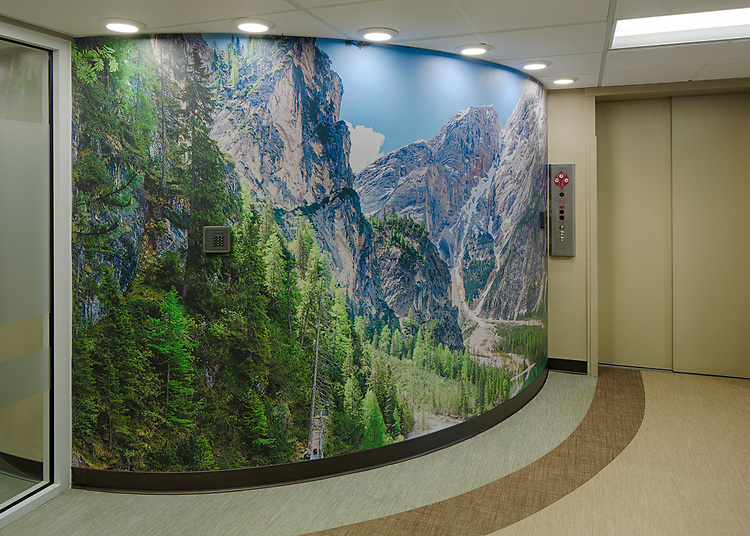 BlueRidge Vista Acrovyn by Design   Construction Specialities Inc.