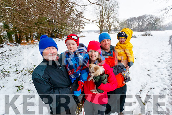Michael O'Neill, Luke O'Sullivan, Carla O'Neill with (Jessie the Dog), Danny O'Sullivan and Daniel O'Sullivan, enjoying a walk in Killarney National Park on Saturday last.