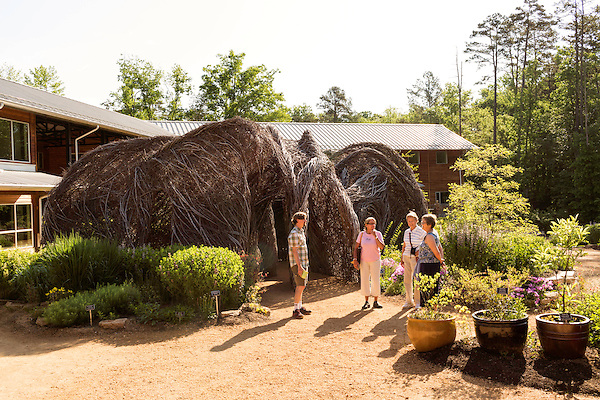 """May 8, 2015. Chapel Hill, North Carolina.<br />  Matt Daley (left), an employee of the NC Botanical Gardens, stands in front of Patrick Dougherty's sculpture """"Homegrown"""" while talking to (left to right) Sarah Dunn, Marlene Fessick and Charlotte Malone, visitors to the Gardens from Tennessee on a 10 day southeastern garden tour. <br />  Outsiders tend to lump Chapel Hill with nearby Durham, but the more sensible pairing is with Carrboro, the adjacent town that was once a mere offshoot known as West End. Even today the transition from Chapel Hill, anchored by North Carolina''s flagship public university, into downtown Carrboro is virtually seamless."""