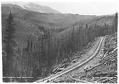 D&amp;RG Marshall Pass track construction recently completed.  Notice the removed trees lying along the right side of the track.  A two-wire telegraph circuit has been installed.<br /> D&amp;RG  Marshall Pass, CO  Taken by Jackson, William Henry - ca. 1882-1890