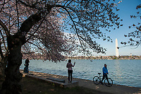 A very sparse crowd of people visit the Tidal Basin and the blossoming cherry blossoms as the United States deals with the COVID-19 pandemic in Washington, DC, Tuesday, March 17, 2020. Credit: Rod Lamkey / CNP/AdMedia