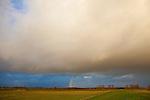 Europa, DEU, Deutschland, Nordrhein Westfalen, NRW, Rheinland, Niederrhein, Ruhrgebiet, Xanten, Naturschutzgebiet Xantener Altrhein, Bislicher Insel, Unwetter, Wetterfront, Regen, Wolkenstimmung, Regenbogen, Kategorien und Themen, Natur, Umwelt, Landschaft, Jahreszeiten, Stimmungen, Landschaftsfotografie, Landschaften, Landschaftsphoto, Landschaftsphotographie, Wetter, Himmel, Wolken, Wolkenkunde, Wetterbeobachtung, Wetterelemente, Wetterlage, Wetterkunde, Witterung, Witterungsbedingungen, Wettererscheinungen, Meteorologie, Bauernregeln, Wettervorhersage, Wolkenfotografie, Wetterphaenomene, Wolkenklassifikation, Wolkenbilder, Wolkenfoto....[Fuer die Nutzung gelten die jeweils gueltigen Allgemeinen Liefer-und Geschaeftsbedingungen. Nutzung nur gegen Verwendungsmeldung und Nachweis. Download der AGB unter http://www.image-box.com oder werden auf Anfrage zugesendet. Freigabe ist vorher erforderlich. Jede Nutzung des Fotos ist honorarpflichtig gemaess derzeit gueltiger MFM Liste - Kontakt, Uwe Schmid-Fotografie, Duisburg, Tel. (+49).2065.677997, archiv@image-box.com, www.image-box.com]