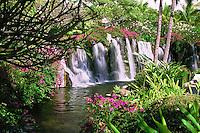 Waterfalls, Lush, Greenery, Colorful Flowers, USA