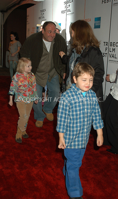 WWW.ACEPIXS.COM . . . . . ....NEW YORK, APRIL 27, 2005....James Gandolfini at the 'Muppets 'Wizard of Oz' premiere held at the Tribeca Performing Arts Center.....Please byline: KRISTIN CALLAHAN - ACE PICTURES.. . . . . . ..Ace Pictures, Inc:  ..Craig Ashby (212) 243-8787..e-mail: picturedesk@acepixs.com..web: http://www.acepixs.com