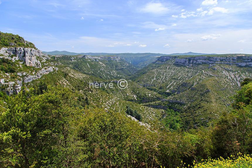 France, Gard (30), Vissec, les gorges de la Vis après le cirque de Navacelles vu depuis le belvédère de la Doline // France, Gard, Vissec, the gorges of the Vis river