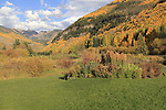 Vail Valley with fall Aspen trees, Colorado. John offers autumn photo tours throughout Colorado.