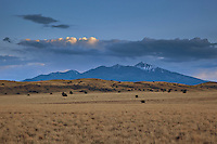 San Francisco Peaks with Humphreys Peak viewed from east side, from Deadman Flat area of Coconino National Forest, north of Flagstaff, Arizona, AGPix_1905