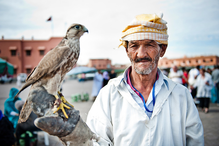 Portrait photo of a man with a bird of prey in Djemaa El Fna Square, Marrakech (Marrakesh), Morocco, North Africa. This black and white portrait photo of a Berber man with a bird of prey shows one of the numerous forms of entertainment, games and performances in Djemaa El Fna Square.