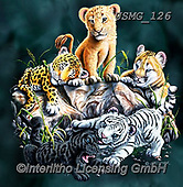 Steven-Michael, REALISTIC ANIMALS, REALISTISCHE TIERE, ANIMALES REALISTICOS, paintings+++++,USMG126,#a#, EVERYDAY,lion,tiger,lepard,panther ,puzzle,puzzles