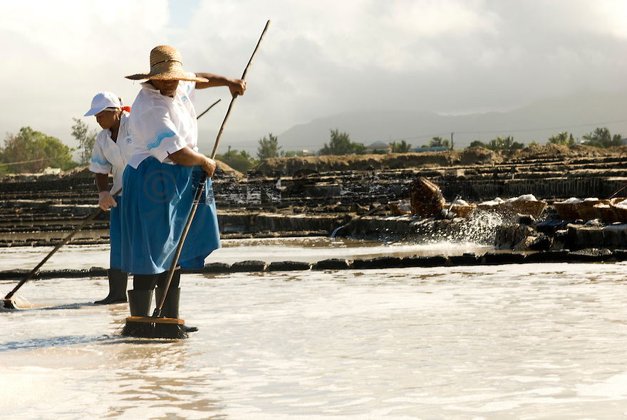 Workers in salt pans in Tamarin, Mauritius.