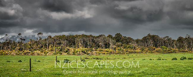 Brooding skies over coastal farmland near Karamea, Kahurangi National Park, West Coast, Buller Region, New Zealand