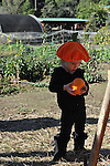 Little Pumpkin Party, Hidden Villa, October 2016