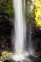 'Akaka Falls at 'Akaka Falls State Park, Big Island.