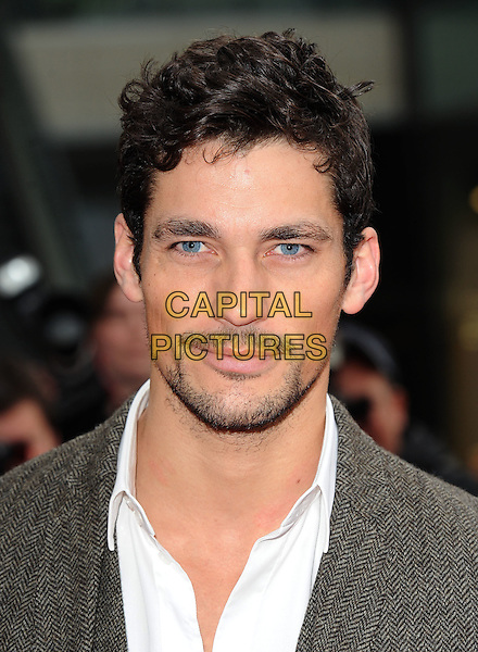 "DAVID GANDY.The World Premiere of ""Prince Of Persia - Sands Of Time"", The Vue Westfield, London, England..9th May 2010.headshot portrait white grey gray goatee stubble facial hair . CAP/BEL.©Tom Belcher/Capital Pictures."