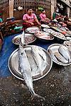 Venders selling fish in Yangon market