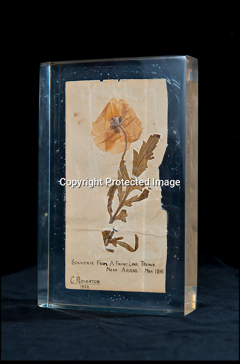 BNPS.co.uk (01202 558833)<br /> Pic: RachelAdams/BNPS<br /> <br /> ***Please use full byline***<br /> <br /> The oldest surviving poppy from the bloody battlefields of the First World War has emerged for sale almost 100 years after it was first picked.<br /> <br /> The vivid red flower was taken from the front-line trenches of Arras in northern France by 17-year-old British soldier Private Cecil Roughton in 1916.<br /> <br /> The poppy is thought to be the oldest in Britain and one of only two that survived from the First World War.<br /> <br /> It is expected to sell for £1,000 when it goes under the hammer at Duke's Auctioneers in Dorchester, Dorset.