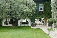 An imposing olive tree grows close to the loggia which is used as an outdoor living area