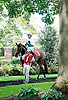 Vanishing before The Christiana Stakes at Delaware Park 9/15/12