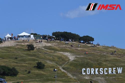 29 April - 1 May, 2016, Monterey, CaliforniaUSA<br /> Race day crowd<br /> &copy;2016, Richard Dole<br /> LAT Photo USA