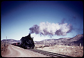 D&amp;RGW #495 K-37 hauling freight.<br /> D&amp;RGW