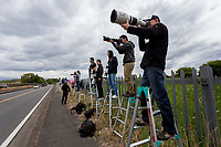 Military aircraft enthusiasts use step ladders and long lenses to look into  Naval Air Facility, Atsugi airbase as F18 fighter jets take off. Yamato, Kanagawa, japan. Monday April 29th 2019. The F18 of the Royal Aces squadron is a rare visitor to this US and Japan Self Defence Force base in Kanagawa. Once stationed there the jets, which were the cause of lawsuits related to noise levels by local residents, have been moved to Iwakuni airbase. Many aircraft enthusiasts still turn put to watch and photograph them when they visit however..