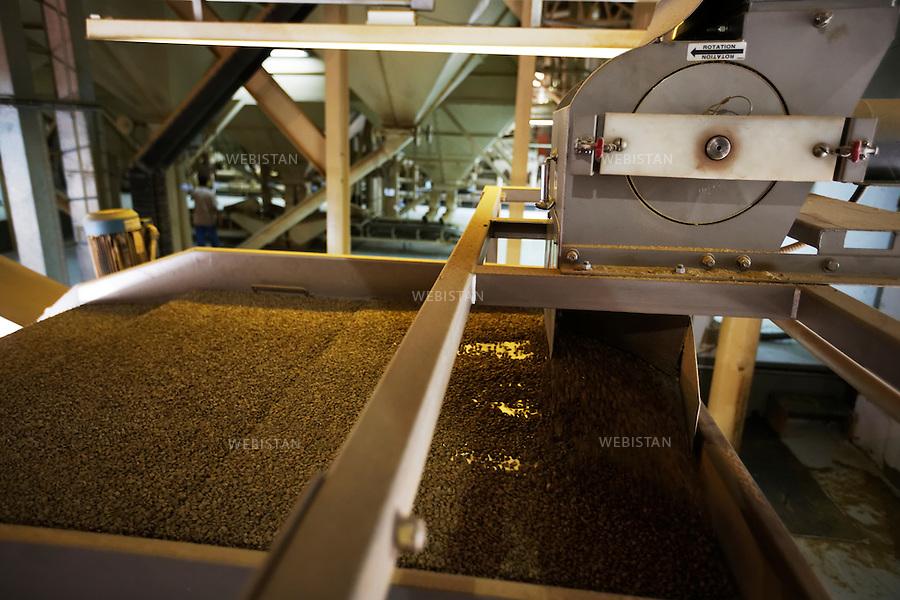 Bresil, etat Minas Gerais, Guaxupe, entrepot Cooxupe, 31 octobre 2012.<br /> <br /> Cooxupe est l&rsquo;une des plus grosses cooperatives bresiliennes de cafe. Elle a signe un partenariat avec Nespresso dans le cadre du Programme AAA. Elle dispose de plusieurs sites dont celui de Guaxupe qui s'est dote, en 2008, d'un laboratoire ultra-moderne d'analyse du cafe.<br /> Etape du tri selon la grosseur du grain.<br /> Reportage les Chants de cafe_soul of coffee, realise sur les acteurs terrain du programme de developpement durable Triple AAA de Nespresso.<br /> <br /> <br /> Brazil, Minas Gerais, Guaxupe, Cooxupe Warehouse, October 31, 2012 <br /> <br /> Cooxupe, one of the largest coffee cooperatives in Brazil, signed a partnership with Nespresso AAA Program. Cooxupe has several sites, including one in Guaxupe, which in 2008 acquired a state-of-the-art laboratory to analyze coffee. <br /> Beans are sorted according to their size.  <br /> Assignment: les Chants de cafe_ Soul of Coffee, implemented on the fields of Nespresso&rsquo;s AAA Sustainable Quality Program.