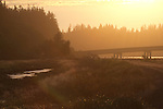 Willapa Bay, Naselle River estuary, Highway 101, Pacific County, Washington Coast, Washington State, Pacific Northwest, United States,