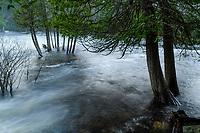 Raquette River In Flood, Adirondack Forest Preserve, New York