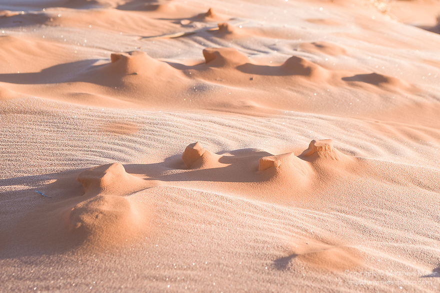 Coral Pink Sand Dunes State Park, Kanab, Utah; formations in the sand with early morning frost, winter