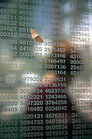 A moth clings to Holocaust victims identification numbers etched in the glass of the Jewish Holocaust Memorial in Boston, MA with person walking behin