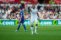 Ashley Williams of Swansea  gestures in ager at referee Stuart Attwell during the Barclays Premier League match between Swansea City and Everton played at the Liberty Stadium, Swansea  on September 19th 2015
