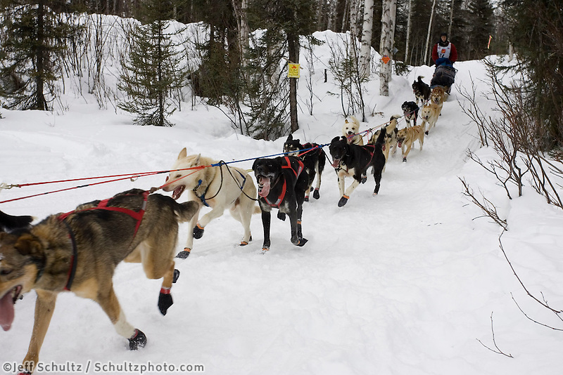 Ramey Smyth on Trail After Willow Restart Iditarod 2005 SC AK Winter
