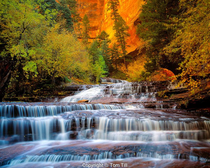 Archangel Cascades, North Fork of Virgin River, Zion National Park, Utah