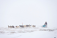 2006 Yukon Quest musher Hugh Neff in near whiteout conditions on Eagle Summit.