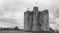 Trim Castle was featured in the 1995 movie, Braveheart.