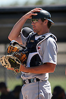 Detroit Tigers minor leaguer Dusty Ryan during Spring Training at the Chain of Lakes Complex on March 17, 2007 in Winter Haven, Florida.  (Mike Janes/Four Seam Images)