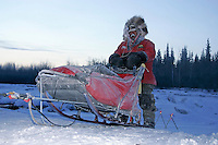 Wednesday March 7, 2007   Mike Williams' dogs run up the river bank at the Nikolai checkpoint on Wednesday morning in 35 below temperatures