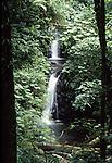 Waterfalls at Monteverde in Costa Rica