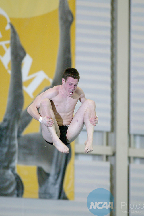 28 MAR 2004: Steven Segerlin of Auburn University dives in the Platform Dive at the NCAA Division I Men's Swimming and Diving Championships at the Nassau County Aquatic Center in East Meadow, NY. Segerlin placed second in the event. Jeff Zelevansky/NCAA Photos