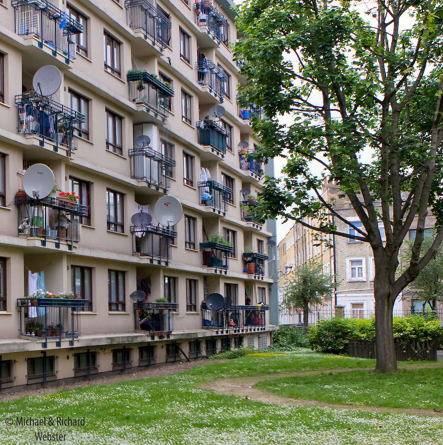 Satellite dishes,washing and potted plants adorn the balconies of a set of Central London flats. Outside a small area of green is dominated by a massive Plane tree.