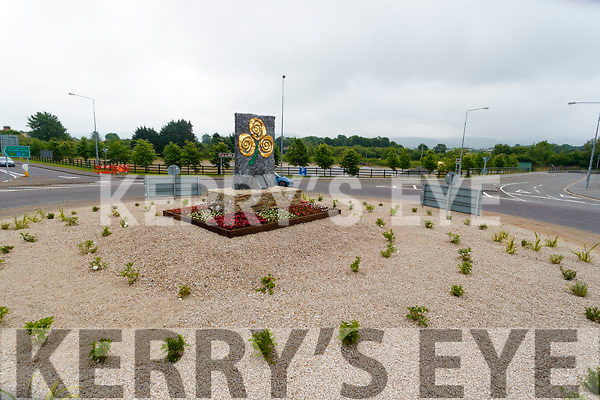 Roundabout at Ballymullen