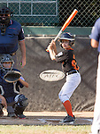 LALL Majors Championship Game Giants at Yankees  at Purissima Fields, June 7, 2016<br />