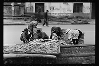 Workers dry fish under the sun in Poyang county at Poyang Lake, Jiangxi Province, November 2017. Poyang Lake, located in the north of Jiangxi Province, is the largest freshwater lake in China. It fluctuates dramatically between wet and dry seasons, from 3,500 square kilometres down to about 200 square kilometres. The lake provides a habitat for half a million migratory birds.