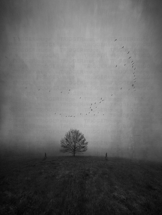 Silhouettes of two persons walking away from each other and a lonely tree in a strange and further empty landscape