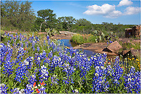 Not a bad view for a patch of bluebonnets in the Texas Hill Country. Never know what you'll find at the end of a dirt road!