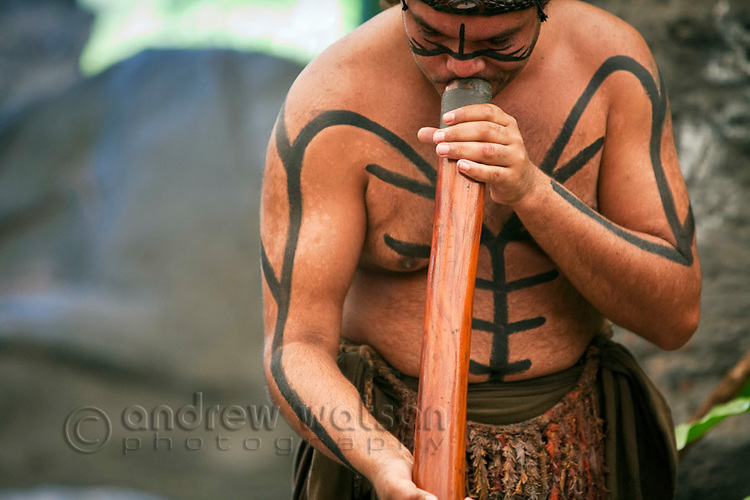 Didgeridoo player during indigenous dance performance at Tjapukai Aboriginal Cultural Park.  Smithfield, Cairns, Queensland, Australia