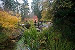 Bellevue Botanical Garden.Bellevue, Washington, State, Pacific Northwest, USA