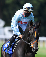 Marlay Park ridden by Thor Hammer Hansen goes down to the start of The AJN Steelstock Kentford British EBF Novice Stakes    during Horse Racing at Salisbury Racecourse on 9th August 2020