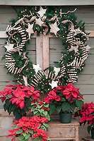 Poinsettias and wreath.